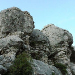 lisane_krajolik23