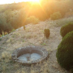 lisane_krajolik29