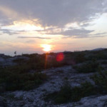 lisane_krajolik40