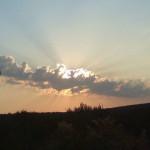 lisane_krajolik8