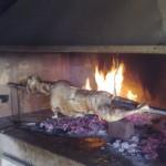 lisane_opcenito5